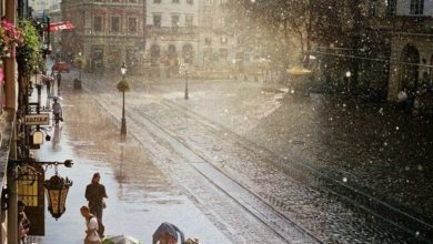 Photo of 18 серпня у Львові прогнозують грози та короткочасні дощі