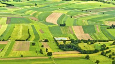 Photo of Із фірми, яка боргувала гроші за оренду землі у Пустомитах, стягнули 173 тисячі