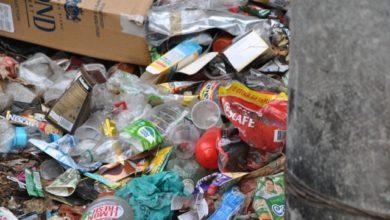 Photo of За півроку на Львівщині ліквідували 21 стихійне сміттєзвалище
