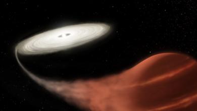 """Photo of NASA виявили в космосі """"зірку-вампіра"""""""