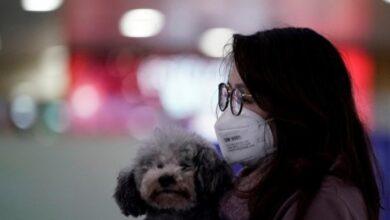 Photo of Українців, які перебувають у Китаї, помістять у місцеві лікарні у разі виявлення симптомів коронавірусу