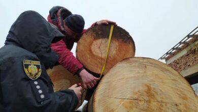 Photo of У Перемишлянському районі знайшли незаконно зрубані дерева