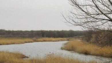 Photo of Зниклого на Львівщині чоловіка знайшли мертвим у річці