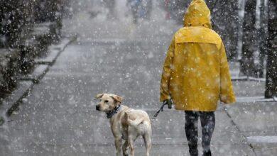 Photo of Опади і ожеледиця: погода на Львівщині на 26 лютого