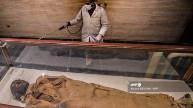 Photo of Через коронавірус в Єгипті дезінфікують піраміди і музеї: фото
