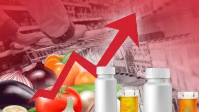 Photo of Ціни на продукти: які штрафи загрожують тим, хто наживається на українцях