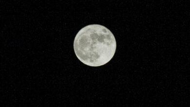 Photo of Місячний календар на квітень 2020