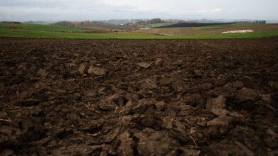 Photo of Ухвалення закону про землю. Чи справді це інвестиційна свобода?