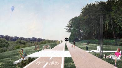 Photo of Вздовж Сихівського лісу прокладуть велодоріжку і пішохідну алею