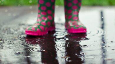 Photo of Літо на Львівщині розпочнеться із дощів