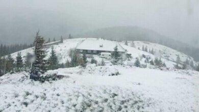 Photo of У переддень літа Карпати засипало снігом