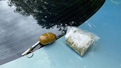 Photo of У Старому Самборі затримали чоловіка із гранатою та марихуаною