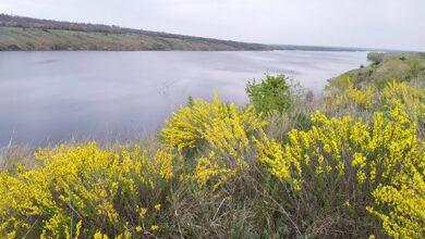 Photo of До 40° і дощі: синоптики дали прогноз погоди в Україні на червень