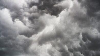 Photo of Київ накриє сильний вітер – оголошено штормове попередження
