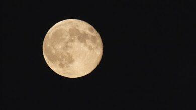 Photo of Який сьогодні, 9 липня, місячний день