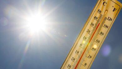 Photo of Сонце та тепло: прогноз погоди на 11 вересня (КАРТА)