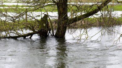 Photo of Самогубство через карантин: на Хмельниччині 13-річна дівчинка кинулася в річку