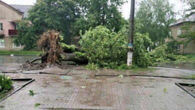 Photo of Негода в Україні: літаючі дерева у Сумах і смерч під Херсоном