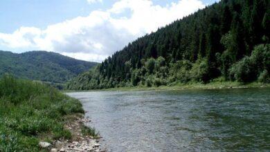 Photo of Про рівень забрудненості річок Львівщини можна дізнатись онлайн
