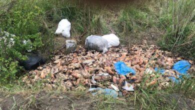 Photo of Поруч з колишнім заводом «Сільмаш» у Львові виявили будівельне сміття та тваринні решти