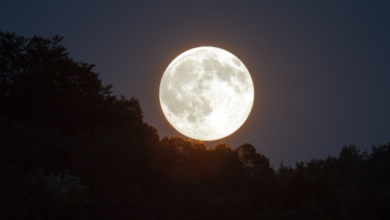 Photo of Який сьогодні, 10 вересня, місячний день