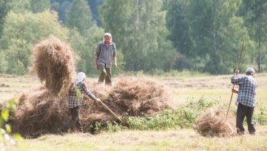 Photo of Бабине літо продовжується: прогноз погоди в Україні на тиждень (КАРТА)