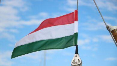 Photo of Угорщина відкриває всі пункти пропуску на кордоні з Україною – дата