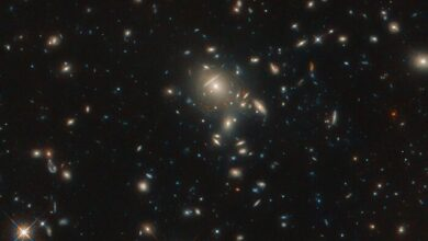 Photo of Hubble показав неймовірний знімок галактики зіркових вибухів