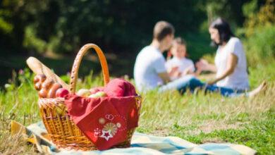 Photo of Сезон відпочинку на природі у розпалі: інтерактивна карта пікнік-локацій в лісах Львівщини
