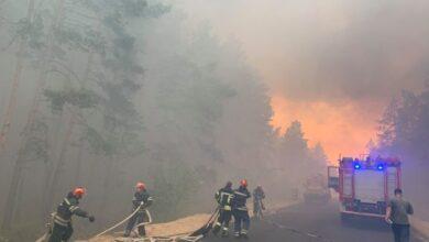 Photo of Масштабні пожежі на Луганщині забрали життя чотирьох людей