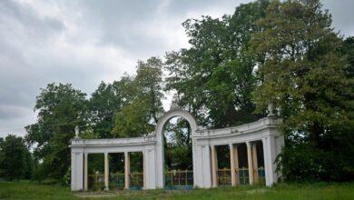Photo of Заступник директора «Муніципальної варти» Дрогобича незаконно вирубав 100 дерев парку