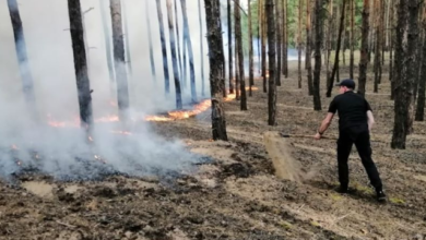 Photo of Пожежа у Луганській області: через бойовиків ДСНС не може залучити до гасіння авіацію