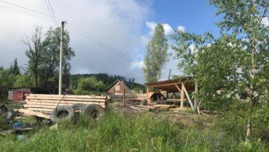 """Photo of Збитки 10 млн грн: на Закарпатті чиновники """"не помічали"""" незаконну вирубку лісу"""