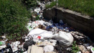 Photo of На Яворівщині виявили стихійне сміттєзвалище