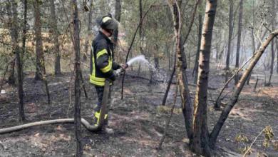 Photo of Три осередки тління: в Луганській області триває гасіння пожежі