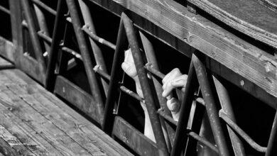 Photo of Одному відрізав пальця, іншому – вухо: подробиці викрадення дітей у Кривому Розі