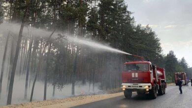 Photo of Лісову пожежу в Луганскій області локалізували – ДСНС