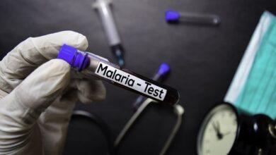 Photo of Повернувся з Уганди: у Львові у чоловіка виявили тропічну малярію
