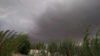 Photo of В Одеській області туристи потрапили в піщану бурю