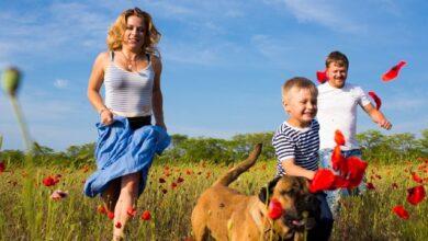 Photo of День родини в Україні: найкращі привітання у листівках