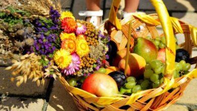 Photo of Львів'ян просять допомогти зібрати фруктові кошики воїнам на Спаса. Як долучитися?