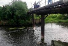 Photo of На Жидачівщині з річки витягли тіло 82-річної бабусі