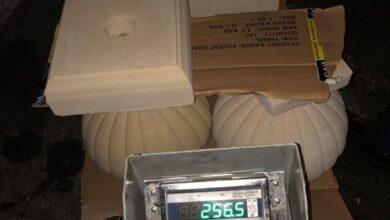 Photo of За вихідні митники вилучили понад тонну контрабандних товарів