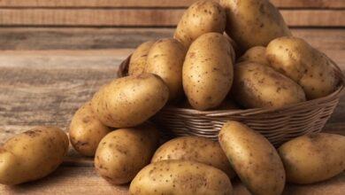Photo of Україна увійшла у ТОП-3 країн-виробників картоплі