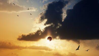 Photo of У 2027 році відбудеться унікальне сонячне затемнення – дата