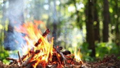 Photo of На Львівщині оголосили надзвичайну пожежну небезпеку. Правила поведінки