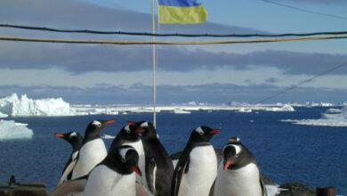 Photo of В Україні шукають полярників для 26-ї антарктичної експедиції