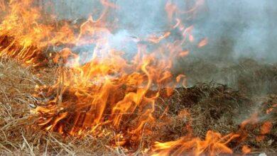 Photo of Рятувальники попереджають мешканців Львівщини про високу пожежну небезпеку