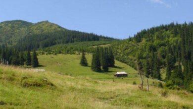 Photo of На Львівщині створять природний парк «Королівські Бескиди»