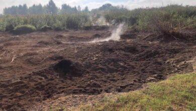 Photo of На Львівщині спалахнули торфяні пожежі